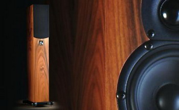 XONE. With a footprint similar to that of Xen, but in a miniature floorstanding cabinet, Xone provides musical insight and precision together with superb bass timing, pitch, punch and extension, in a beautifully svelte package.