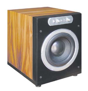PM-100 Active Woofer